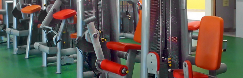 Fitness Equipment & Rehabilitation Equipment for strengthen Deltoids, Abdominals and all muscles. Squat, Scott & Hyper benches. No1 in gym equipment